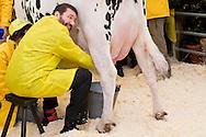 Roma 6 Febbraio 2015<br /> Manifestazione in Campidoglio, per &laquo;difendere il latte italiano&raquo;, organizzato dalla Coldiretti, e l&rsquo;Associazione italiana allevatori che  hanno portato le  mucche  nelle piazze italiane per sensibilizzare opinione pubblica e istituzioni sulla crisi del settore lattiero-caseario. Il sindaco di Roma Ignazio Marino , munge una mucca in piazza del Campidoglio.<br /> Rome February 6, 2015<br /> Demostration  at the Capitol, to &quot;defend the Italian milk&quot;, organized by Coldiretti, and the Association of Italian farmers who brought the cows in the Italian squares to sensitize public opinion and institutions on the crisis of the dairy sector. Rome mayor Ignazio Marino, milking a cow in Capitol Square.