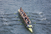 Crew: 103  Sabrina A<br /> <br /> Head of the River Race (HoRR) 2019<br /> <br /> To purchase this photo, or to see pricing information for Prints and Downloads, click the blue 'Add to Cart' button at the top-right of the page.