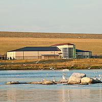 missouri river country, montana, usa, summer, montana high plains, eastern montana, fort peck, charlie russel wildlife area