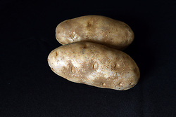 18 February 2016:   Studio - Potato on black #015.  A pair of baking potatoes shot in a studio on a black background.