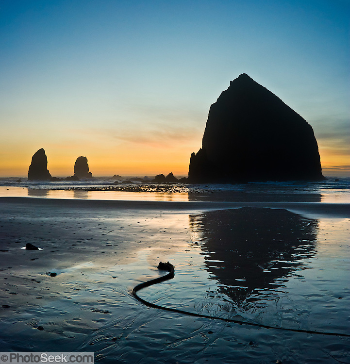 The pounding Pacific Ocean has eroded a bluff to create Haystack Rock, a 235-foot (72-meter) tall monolith (or sea stack), on Cannon Beach, on the Oregon coast. Haystack Rock is part of the Tolovana Beach State Recreation Site and is managed by Oregon Parks and Recreation below the mean high water (MHW) level, and above the MHW level by the Oregon Islands National Wildlife Refuge of the United States Fish and Wildlife Service. Panorama stitched from 2 overlapping images.