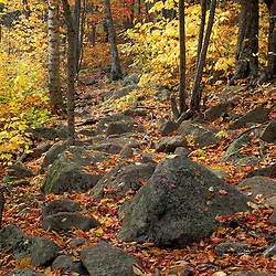 Acadia NP, ME. Hiking Trails. Fall Foliage. On the Tarn Trail going up Dorr Mountain.