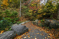Path towards Huddlestone Arch at The Ravine in the North Woods of Central Park