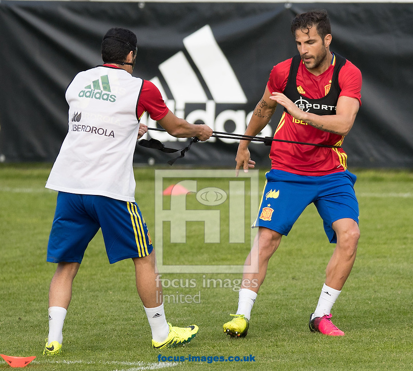 Pedro Rodriguez (right) and Cesc Fabregas of Spain during training at Aktivpark Montafon Stadion, Schruns<br /> Picture by EXPA Pictures/Focus Images Ltd 07814482222<br /> 26/05/2016