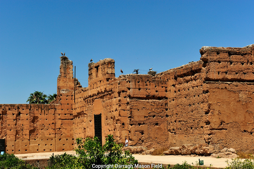 Storks nesting on the walls El Badi Palace which is located in Marrakech, Morocco, and it consists nowadays of the remnants of a magnificent palace built by the Saadian king Ahmad al-Mansur in 1578.
