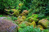 France, Finistère (29), parc naturel régional d'Armorique, Huelgoat, chaos granitique de la forêt de Huelgoat, Sentier des Amoureux // France, Finistere (29), regional natural park of Armorique, Huelgoat, granite chaos of the forest of Huelgoat