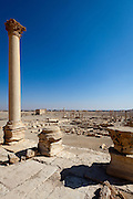 Palmyra seen from the Temple of the Standards, Syria. Ancient city in the desert that fell into disuse after the 16th century.