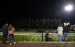 Horses in the Parade ring before the 32Red.com Handicap stakes at Kempton Park Racecourse, Esher.