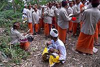Indonesie. Bali. Procession religieuse vers Ubud. // Indonesia. Bali. Religious procession. Near Ubud.
