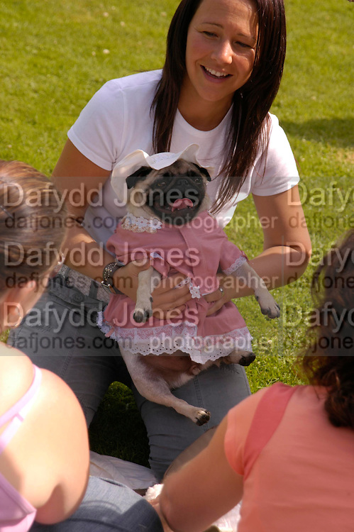Jodie Erics and 'Frankie Boo'. Pug Dog club Tea party held at Cottesbrook Hall.  ( home of  Mr. and Mrs. Alastair Macdonald-Buchanan ) 26 June 2005. . ONE TIME USE ONLY - DO NOT ARCHIVE  © Copyright Photograph by Dafydd Jones 66 Stockwell Park Rd. London SW9 0DA Tel 020 7733 0108 www.dafjones.com