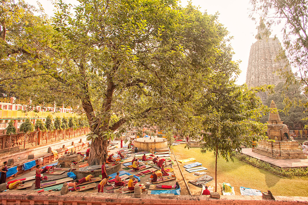 Tibetan Buddhists perform prostrations at the Mahabodhi Temple, where the Buddha attained enlightenment, at Bodhgaya India.