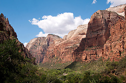 USA Utah, Zion National Park. Weeping Rock land form, with water oozing out of the mountain side.