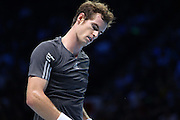 Great Britain's Andy Murray  during first day of the Barclays ATP World Tour Finals at the O2 Arena, London, United Kingdom on 9 November 2014. © Phil Duncan | Pro Sports Images