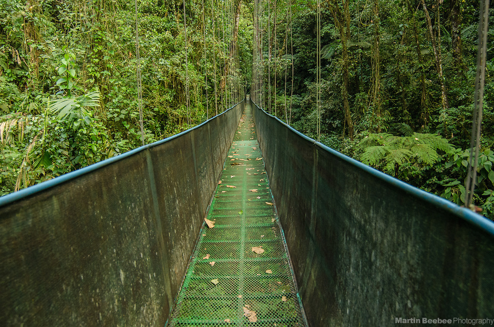 Hanging bridge cutting through the Sky Adventures rainforest in the Arenal area near El Castillo, Costa Rica