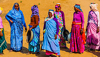 Rajasthani women in bright colors working (carrying dirt) at a construction project along the Jaipur-Agra Road, India.