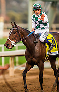 ARCADIA, CA - DECEMBER 30: Daddy's Lil Darling #4 with Mike Smith wins the American Oaks at Santa Anita Park on December 30, 2017 in Arcadia, California. (Photo by Alex Evers/Eclipse Sportswire/Getty Images)