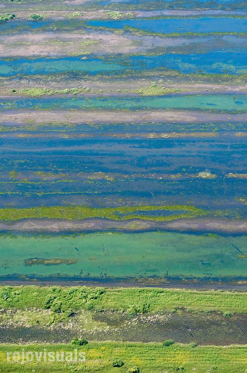 Desde el aire, los humedales de Marismas Nacionales tienen otro carácter, más abstracto y artístico.