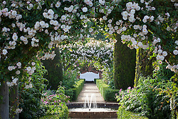 View towards fountain and bench in the rose garden at Mottisfont. Rosa 'Adélaïde d'Orléans' on the arches
