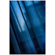 Blue curtains somewhere in Washington DC