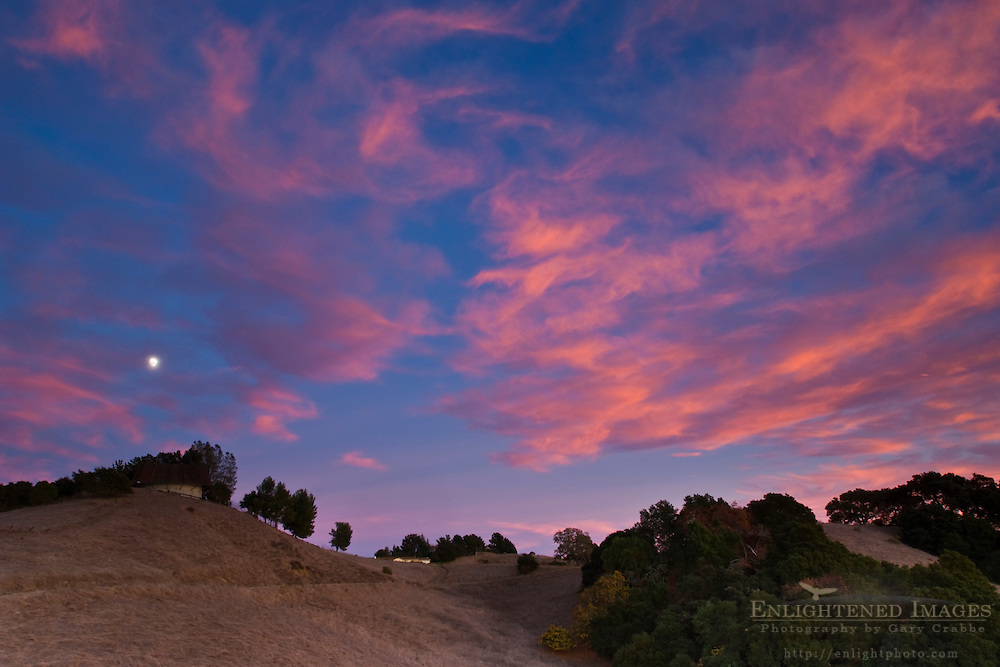 Moon & clouds at sunset over oak trees & hiils, Briones Regional Park, Contra Costa County, California