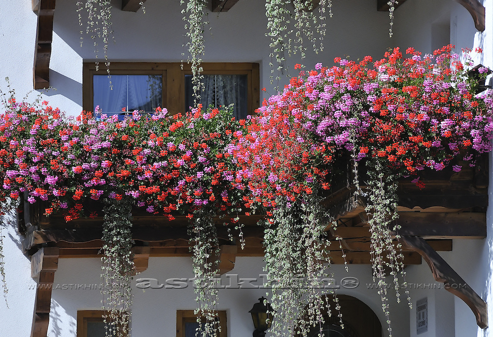 Flowers on Austrian balcony