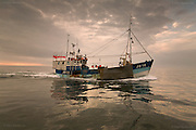 A Jersey registered trawler heads for Liverpool Bay across a flat calm Irish Sea, close to the Skerries lighthouse.