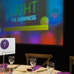 NAMI Chicago - Light the Darkness Gala
