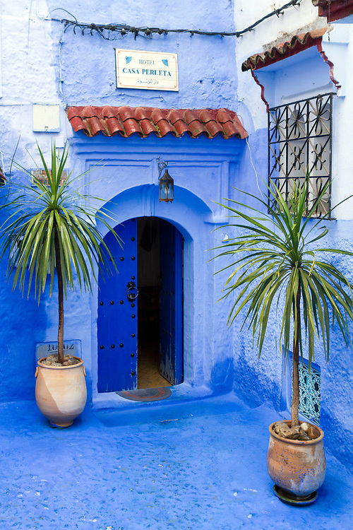 CHEFCHAOUEN, MOROCCO - 29th MARCH 2014 - Blue doorway architecture with decorative palm trees in plant pots, Chefchaouen Medina - the blue city, Rif Mountains, Northern Morocco.
