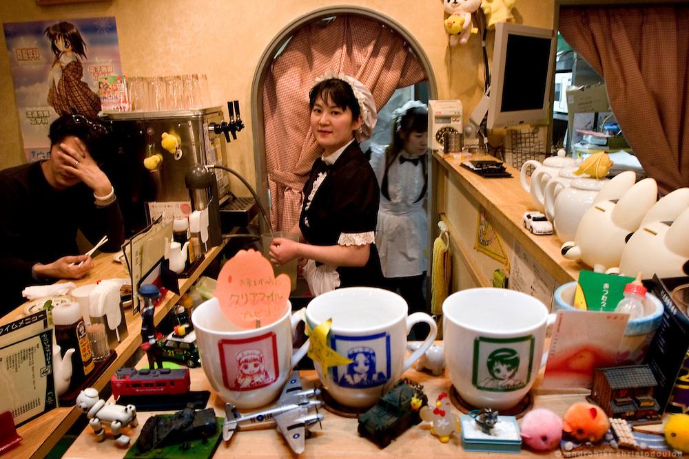 MAI: Maid in HIYOKOYA cafe-restaurant