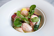 Maine Lobster at the Spoon Bar and Kitchen on Friday, February 15, 2013 in Dallas, Texas. (Cooper Neill/The Dallas Morning News)
