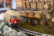 NYBG Train Show