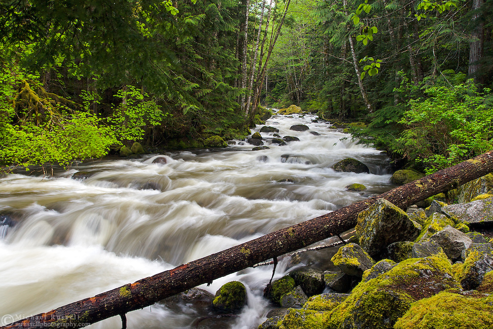 Sowerby Creek spring runoff - Silver Lake Provincial Park near Hope, British Columbia, Canada