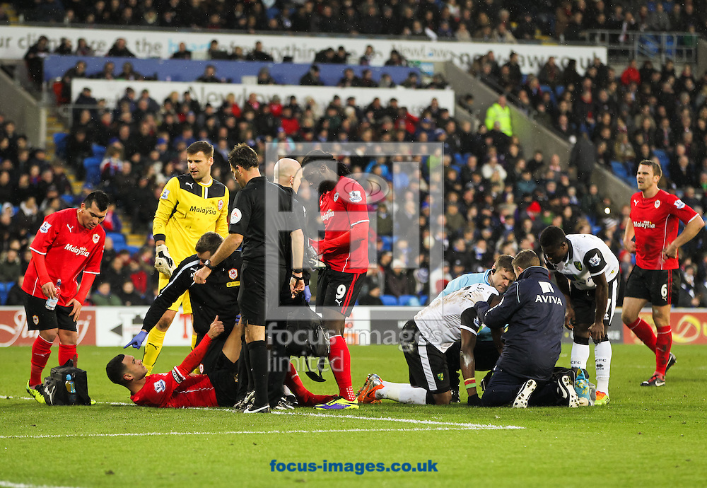 Picture by Tom Smith/Focus Images Ltd 07545141164<br /> 01/02/2014<br /> Steven Caulker (bottom 2nd left) of Cardiff City and S&eacute;bastien Bassong (4th right) of Norwich City both receive treatment for injuries during the Barclays Premier League match at the Cardiff City Stadium, Cardiff.