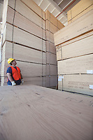Male worker working in warehouse