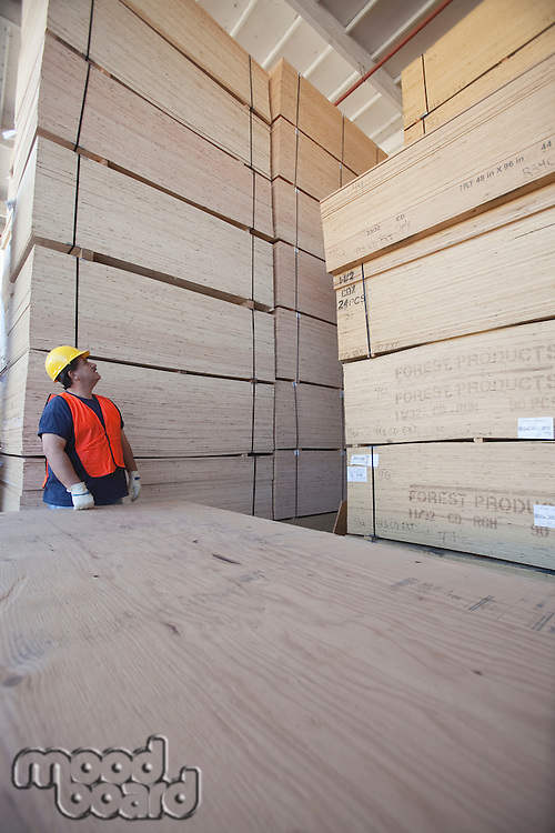 Male worker working in warehouse