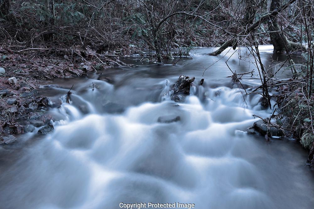 Cold Mountain Creek,  Courtenay,  Comox Valley,  British Columbia,  Canada,  (Photographer;  Isobel Springett),