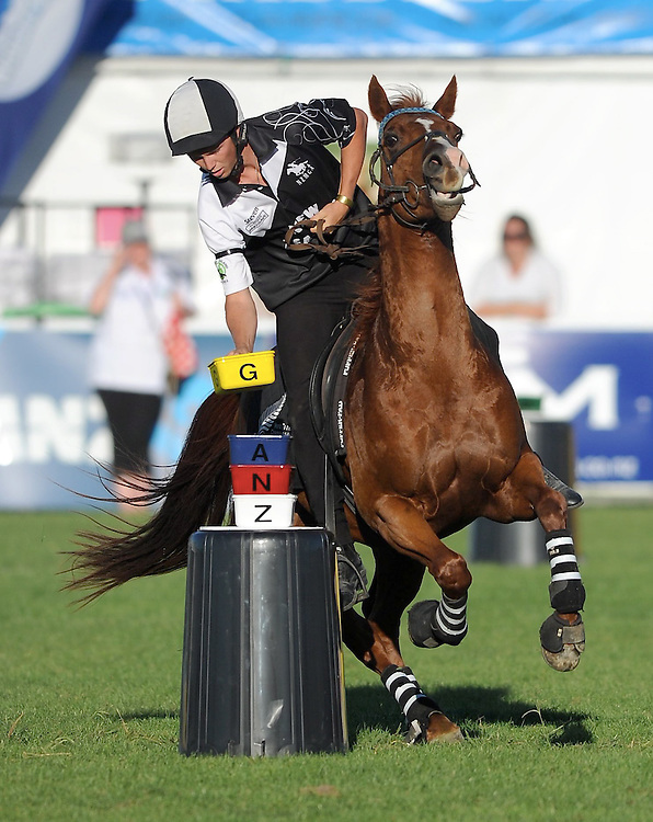 New Zealand's Steve Hooker in action, Heat 2, Mounted Games World Team Championships, Horse of the Year, Hastings, New Zealand. Wednesday, March 13, 2013. Credit: SNPA / Kerry Marshall
