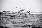 "A fishing boat battles 4-meter-high waves in the waters of the Tsugaru Strait off Oma, northern Japan on 23 September 2008. Oma is well known in Japan as being the landing place for the country's finest quality ""hon maguro"" or Pacific bluefin tuna, which is also known as ""black diamonds"" in Japan..Photographer: Robert Gilhooly"