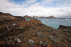 Landscape of lava rocks with Grey Matplants (Tiquilia nesiotica) and bay with ships, Galapagos Islands National Park, Bartolome Island, Galapagos, Ecuador