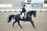 Hans Staub - Warbeau<br /> FEI European Championships 2013<br /> © DigiShots