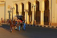 Egypte, Haute Egypte, vallée du Nil, Louxor, caleche pour touriste // Egypt, Nile Valley, Luxor, barouche