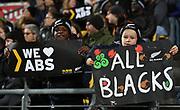 All Blacks fan.<br /> All Blacks v France. Rugby Union. Steinlager Series, 2nd test match. Westpac Stadium, Wellington, New Zealand. Saturday 16 June 2018. &copy; Copyright photo: Andrew Cornaga / www.Photosport.nz