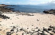 Small sandy beach at Caleta de Caballo, Lanzarote, Canary islands, Spain
