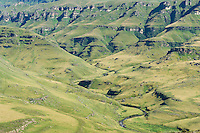 The Pholea River Catchment high in the Drakensberg at Cobhan Nature Reserve, KwaZulu Natal, South Africa