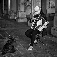 Accordion player WeiLi  Xiao seems to mesmerize this canine music lover; the owner repeatedly tried to pull him away, but the dog refused to budge. Bethesda Terrace in Central Park.