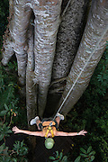 THAILAND, northern, near the village of Mae Kompong, zip lining through the forest canopy.