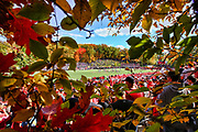 A general view of Clemens Stadium from inside the woods. Credit: Brace Hemmelgarn-Saint John's University