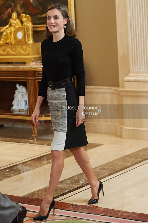 Queen Letizia of Spain attended an audience to representation of Spanish Television on the occasion of the 60th anniversary of the beginning of their official broadcasts at Zarzuela Palace on November 18, 2016 in Madrid