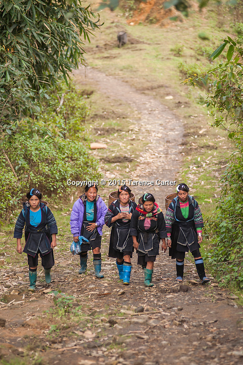 Hilltribe girls return home to their village after visiting the markets in Sapa, Vietnam.