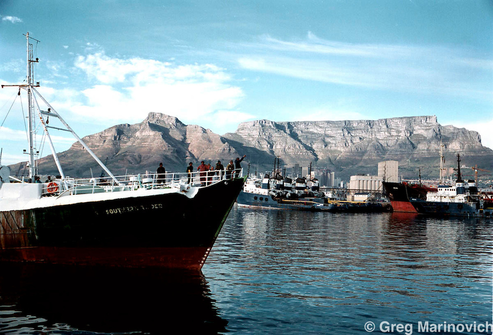 IPMG0524 South Africa, Cape Town, 2000:Fishermen from Premier Fishing's boat Southern Raider prepares to dock at Cape Town's waterfront after 18 days at sea 24 May 2000, South Africa. Premier Fishing (belongs to the Sekunjalo Group) is a black empowerment company..Photograph by Greg Marinovich/South Photographs